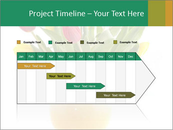 0000076018 PowerPoint Template - Slide 25