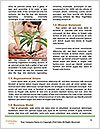 0000076020 Word Templates - Page 4