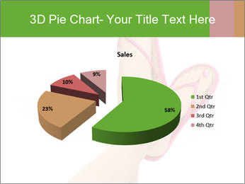 0000076028 PowerPoint Templates - Slide 35