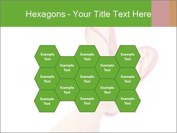 0000076028 PowerPoint Templates - Slide 44