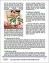 0000076029 Word Template - Page 4