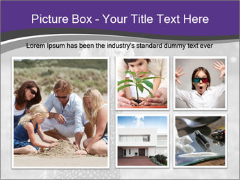 0000076033 PowerPoint Template - Slide 19