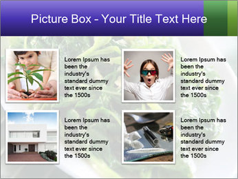 0000076034 PowerPoint Template - Slide 14