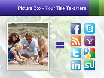 0000076034 PowerPoint Template - Slide 21