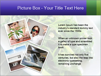 0000076034 PowerPoint Template - Slide 23
