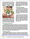 0000076034 Word Templates - Page 4