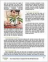 0000076037 Word Templates - Page 4