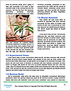 0000076039 Word Template - Page 4