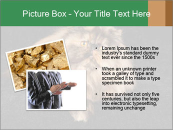 0000076041 PowerPoint Templates - Slide 20