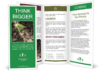 0000076051 Brochure Template