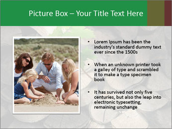 0000076051 PowerPoint Template - Slide 13