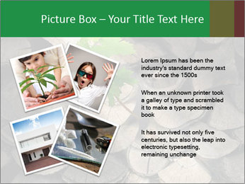 0000076051 PowerPoint Template - Slide 23