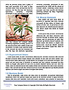 0000076053 Word Templates - Page 4
