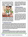 0000076054 Word Templates - Page 4