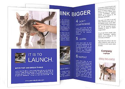 0000076070 Brochure Template