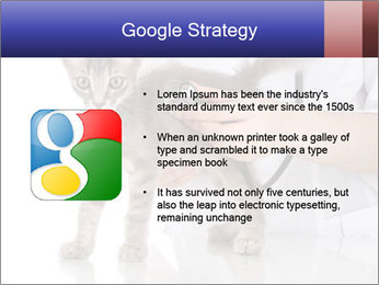 0000076070 PowerPoint Template - Slide 10