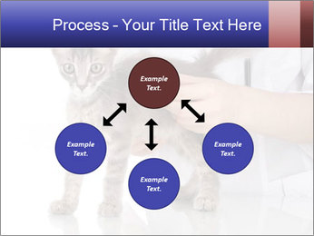 0000076070 PowerPoint Template - Slide 91