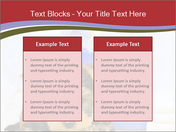 0000076071 PowerPoint Templates - Slide 57
