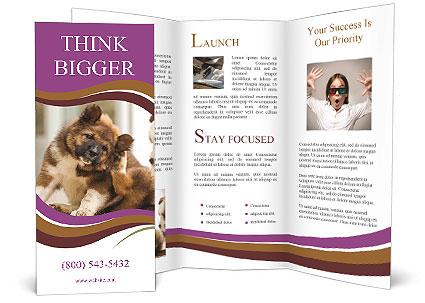 0000076073 Brochure Template
