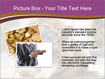 0000076073 PowerPoint Template - Slide 20