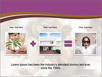 0000076073 PowerPoint Template - Slide 22