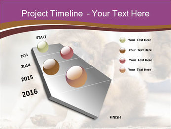 0000076073 PowerPoint Template - Slide 26