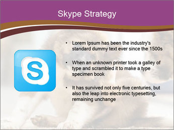 0000076073 PowerPoint Template - Slide 8