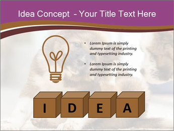 0000076073 PowerPoint Template - Slide 80