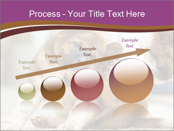0000076073 PowerPoint Template - Slide 87