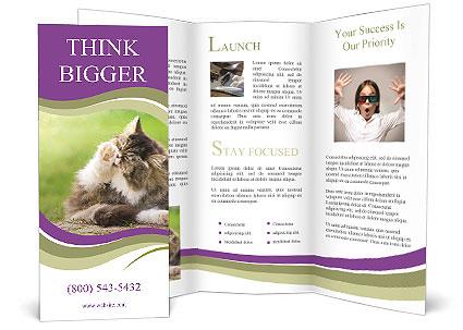 0000076075 Brochure Templates