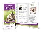 0000076075 Brochure Template