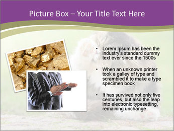 0000076075 PowerPoint Template - Slide 20