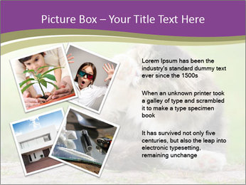 0000076075 PowerPoint Template - Slide 23