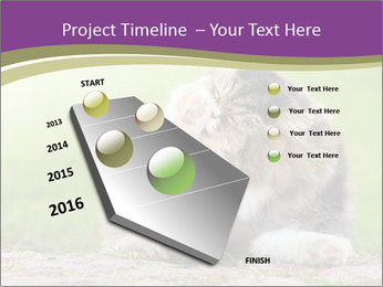 0000076075 PowerPoint Template - Slide 26