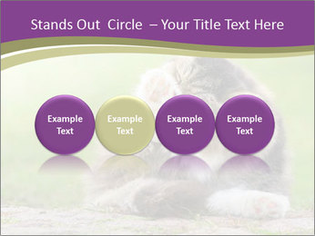 0000076075 PowerPoint Template - Slide 76