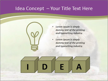 0000076075 PowerPoint Template - Slide 80