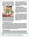 0000076076 Word Template - Page 4