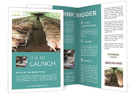 0000076079 Brochure Template