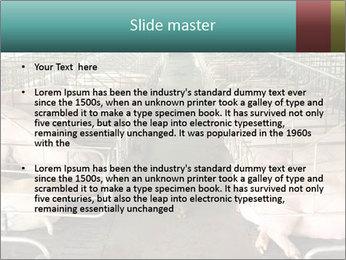 0000076079 PowerPoint Template - Slide 2