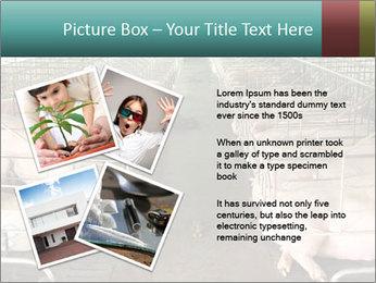 0000076079 PowerPoint Templates - Slide 23