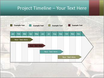 0000076079 PowerPoint Templates - Slide 25