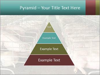 0000076079 PowerPoint Template - Slide 30