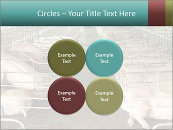0000076079 PowerPoint Templates - Slide 38