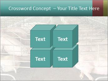 0000076079 PowerPoint Template - Slide 39