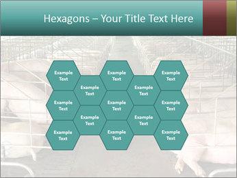 0000076079 PowerPoint Template - Slide 44