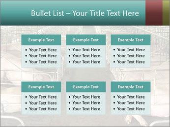 0000076079 PowerPoint Templates - Slide 56
