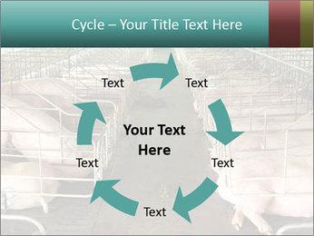 0000076079 PowerPoint Template - Slide 62