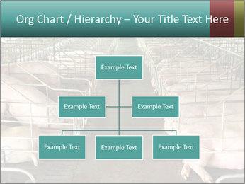 0000076079 PowerPoint Templates - Slide 66