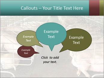 0000076079 PowerPoint Template - Slide 73