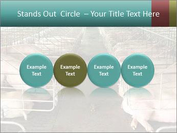 0000076079 PowerPoint Template - Slide 76